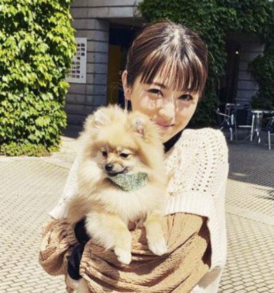浜辺美波と愛犬の2ショット写真
